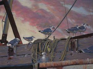 Seagulls' Delight