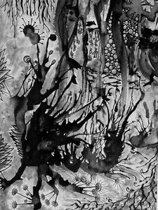 Among the undergrowth Mono