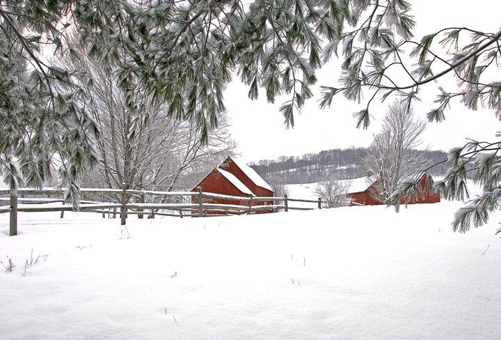 Definitely Vermont - Photography By Gordon Ripley