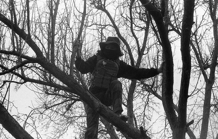 Man in the Tree - Ethan Lehman