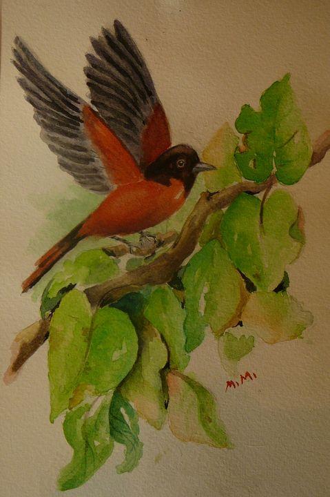 Robin - Mimi's Paintings