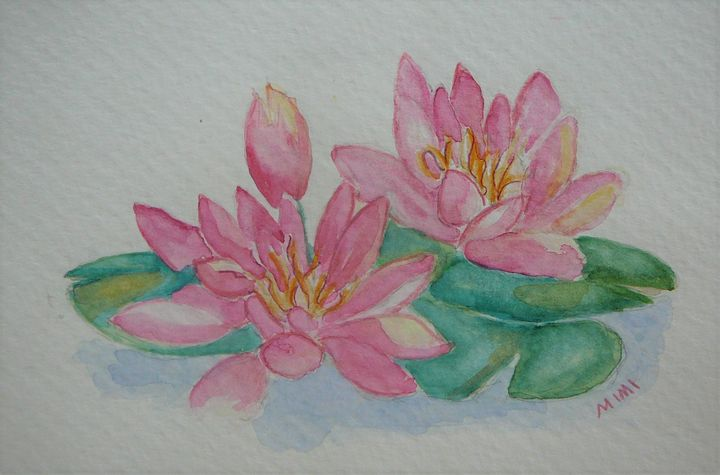 Water Lily - Mimi's Paintings