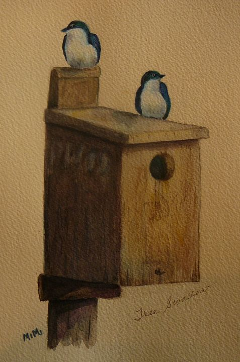 Tree Swallows - Mimi's Paintings