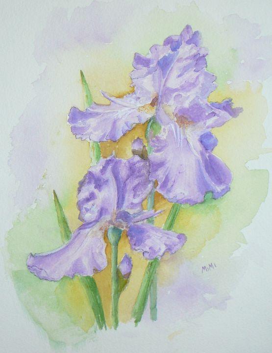 Blooming Iris - Mimi's Paintings