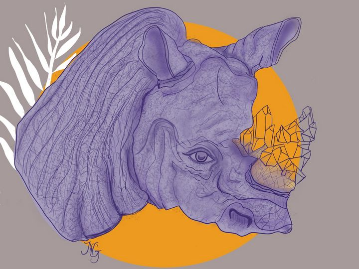 Operation Rhino - Nicobela
