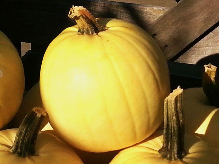Yellow Fall Pumpkin - Emotions - by Tasha Mayes Brookman