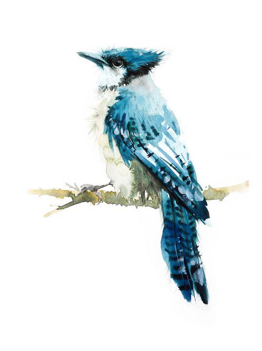 blue jay bird - Oriental Art Studio