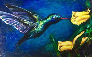 Hummingbird - Samantha Listorti