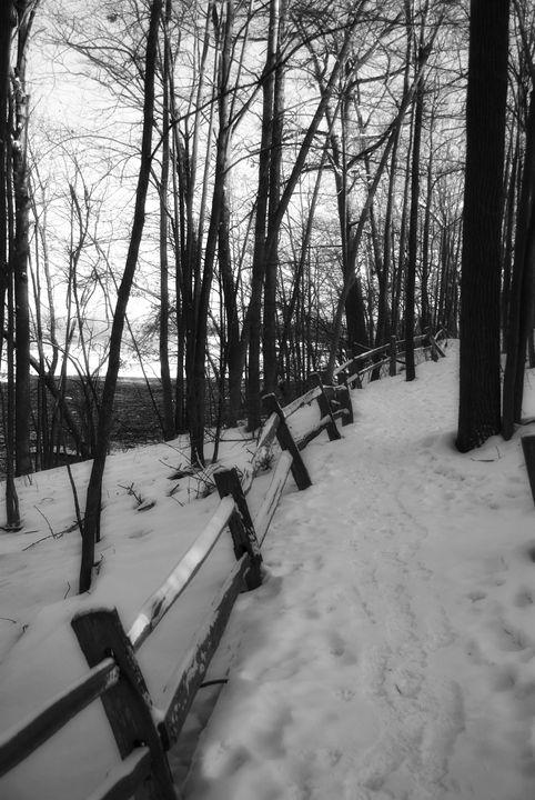 Snow Trail - Flash Bulb Photography
