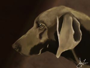 """""""The Weim"""" - Lion Abstract"""