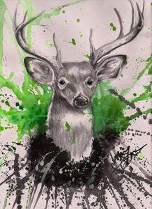 The Stare - Green
