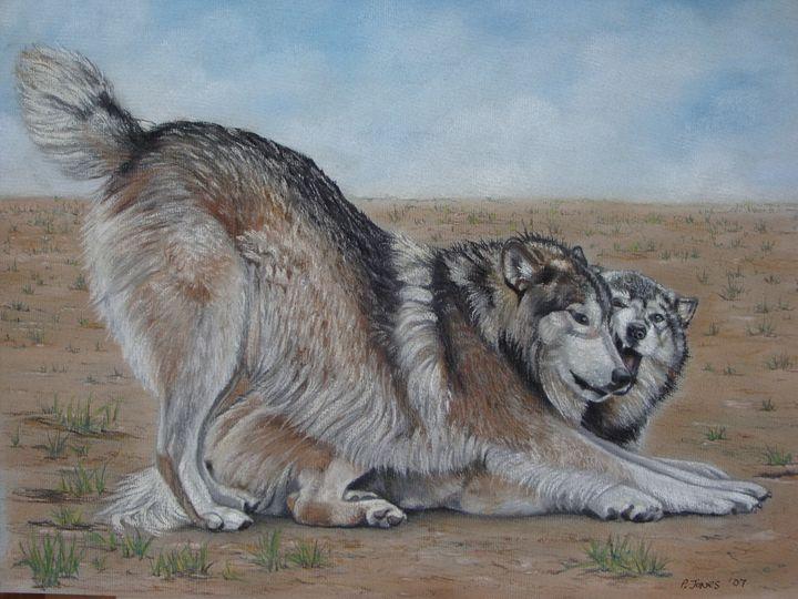 Wolves At Play - pauline jones