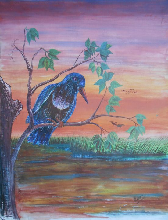 Kingfisher - Roy_all Art Gallery