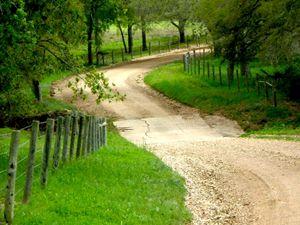 zimmer road