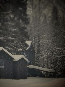 Forgetted Winter Barn