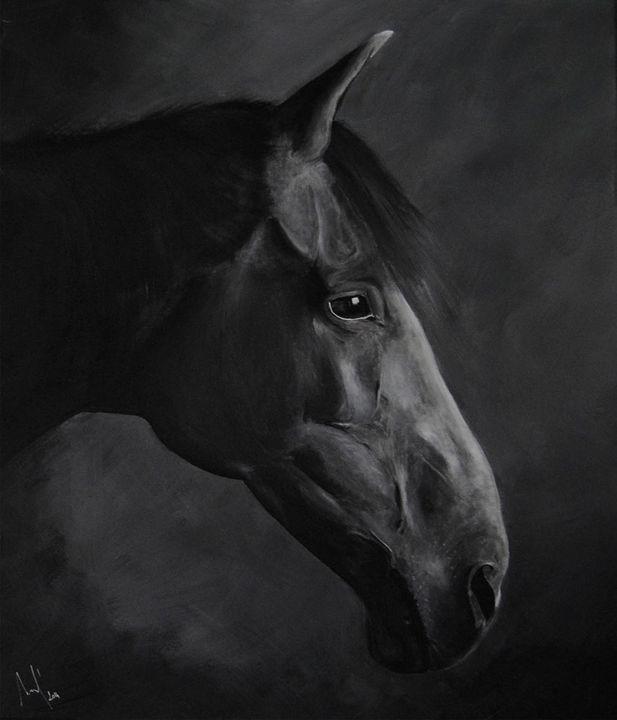 Horse - Florian Quezel