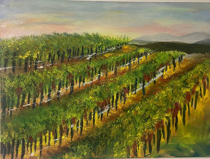 Vineyards Napa Valley - AGALLERY
