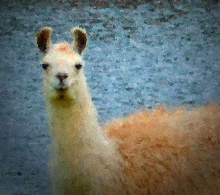 Water Llama - Trulas Treasures