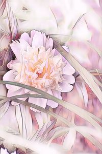 Peaceful Peony in Pastels