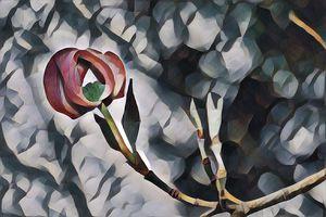 Painted Dogwood Tree Bloom on Canvas