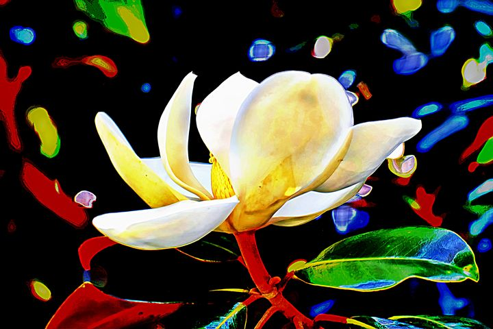 Whimsical Magnolia - The1Essence Presentations