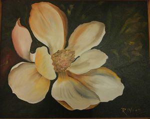 Little Gem Magnolia Blossom