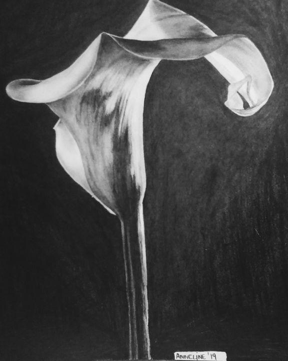 Arum-lily - Anni's Art