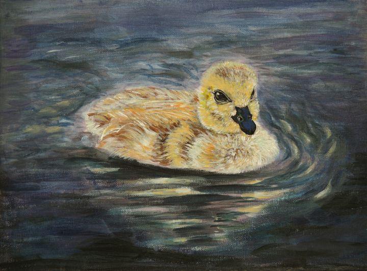 Baby Canada Goose - Sun's Fine Art Gallery