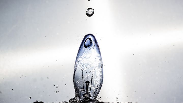 Aquatic Light Bulb Series 1 - The Artwork and Photography of Benjamin Taylor