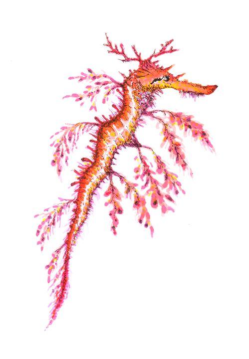 Leafy Seadragon - OrionArt