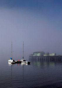 Sailboats in Fog