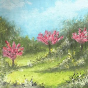 Redbuds by Joey Ellison