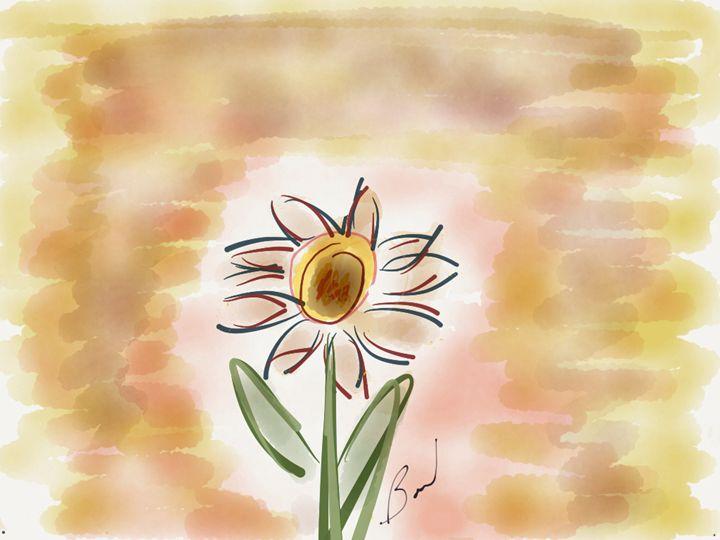 Cosmic Daisy - Barbara Marlin