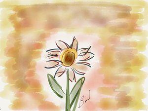Cosmic Daisy