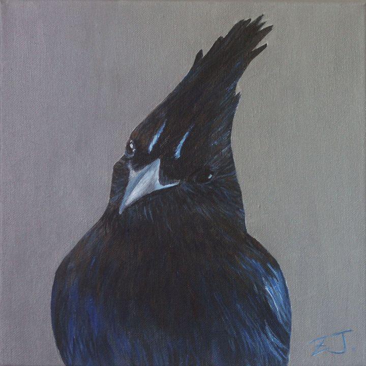 Steller's Jay - Jing Zhu