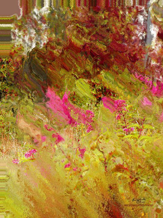 weedsblowinginthesummersun - Elizabeth Oliver muddled photography