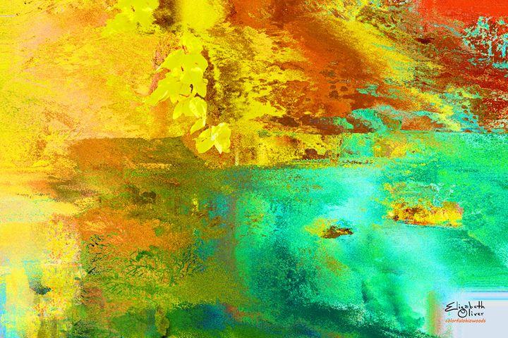 colorfulohiowoods - Elizabeth Oliver muddled photography
