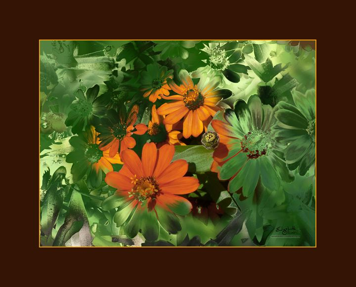 daisiesinfrontofmaintanance - Elizabeth Oliver muddled photography