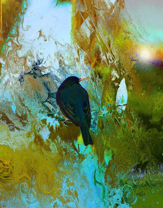 blackbirdonourdeckrail - Elizabeth Oliver muddled photography