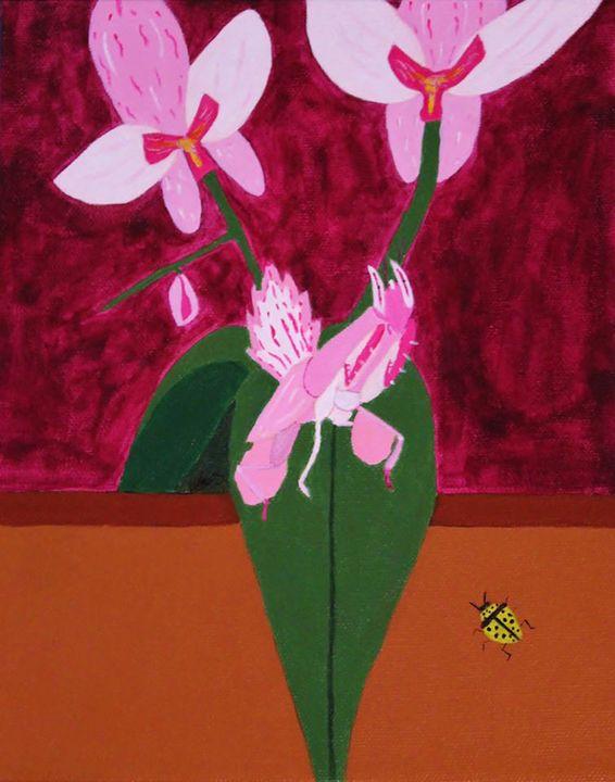Orchid Mantis - Amy Sprague