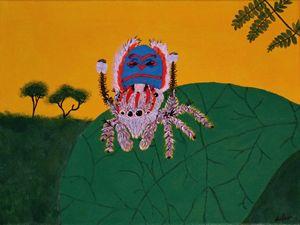 Peacock Spider (Martus Volans) 1