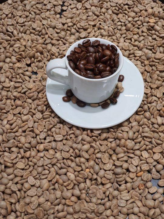 Coffee bean - Abedalrahman samara