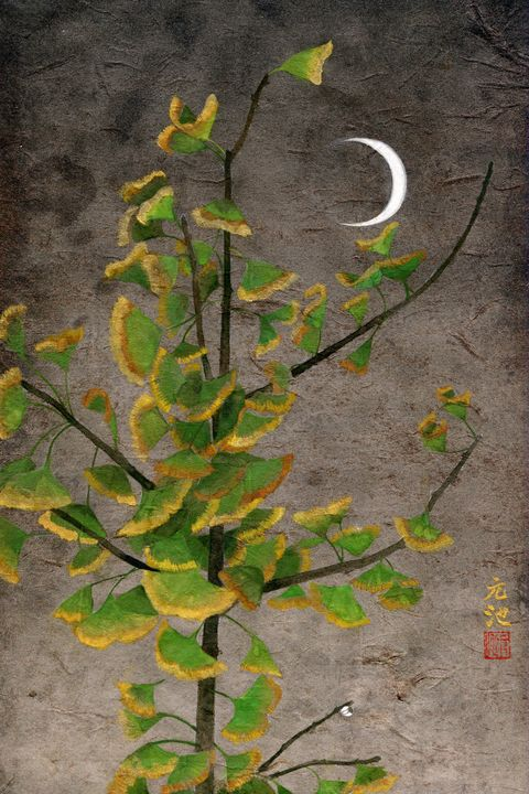 The silent day and night 10# - Yuanchi Qiao