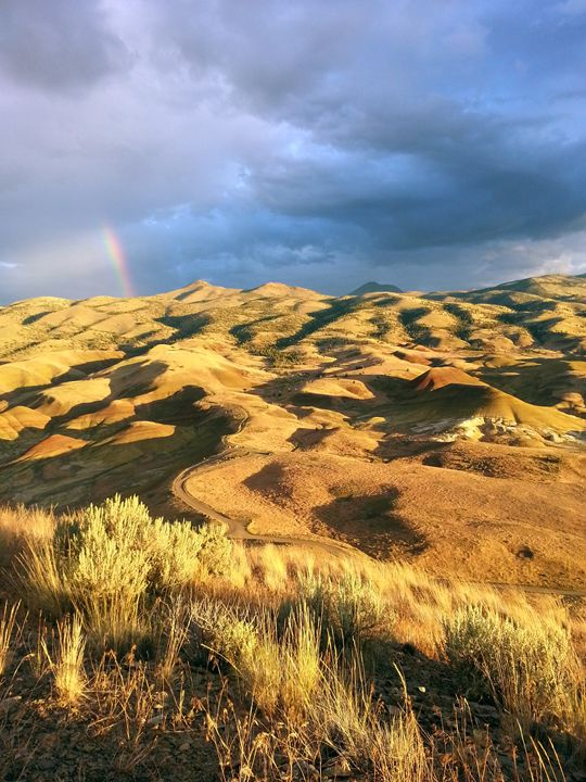 Rainbow at Painted Hills - SchennCo Images