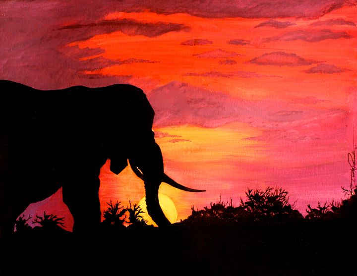 African Sunset - Dusty Pewonka