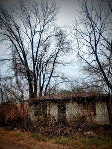 Abandoned - Pieces of Joy