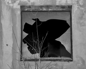 Broken Window I BW