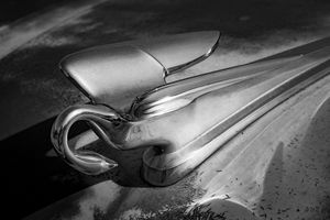 Packard Swan Hood Ornament