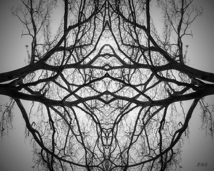 Untitled XV BW - Dave Gordon Arts