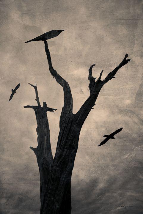 Raven Tree - Dave Gordon Arts